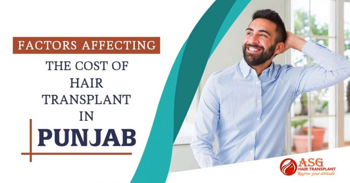 Factors That Consider The Cost of Hair Transplant in Punjab